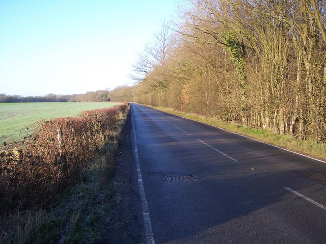 The A262 to Lamberhurst