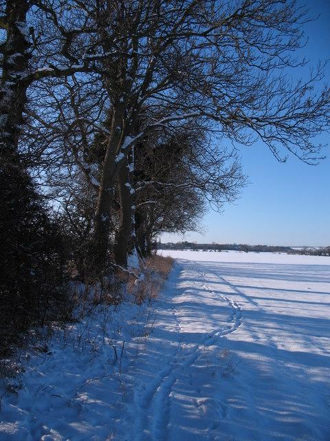 Bridleway to Dishforth