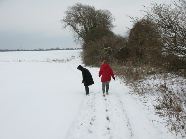 Byway to Eastry from Hammill