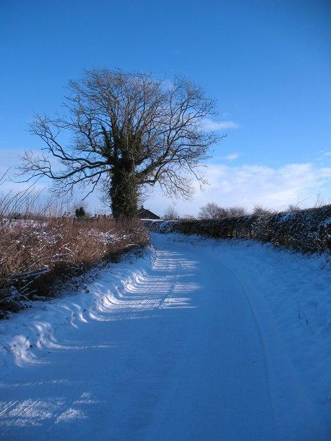 Lingham Lane, Dishforth
