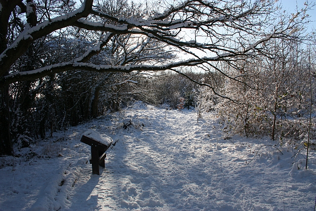 Path through St Wulstan's Nature Reserve