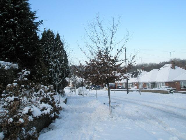 A snowy scene in Chestnut Avenue