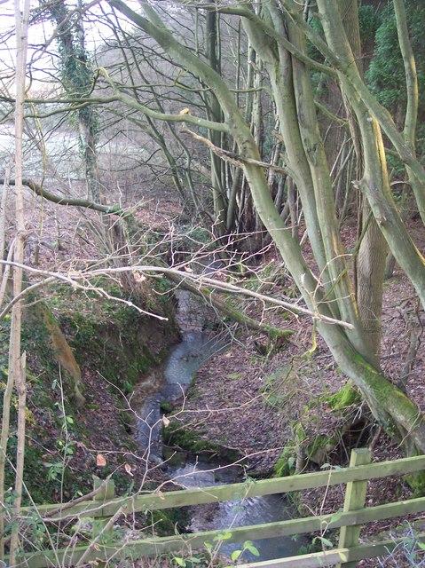 Stream near Tong Lane