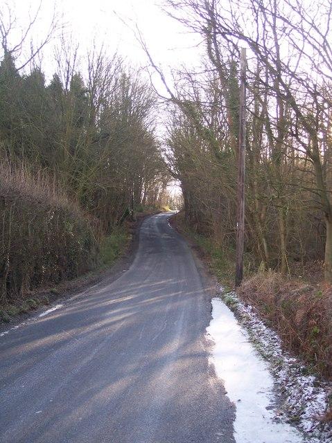 Tong Lane