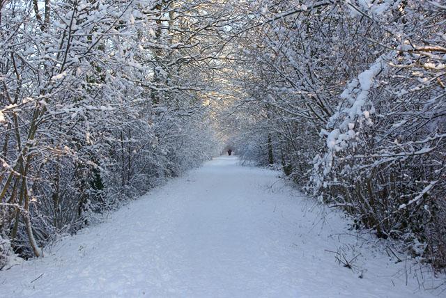 A snowy Worth Way