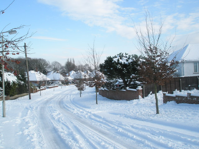 The nursery slopes in Pinewood Avenue
