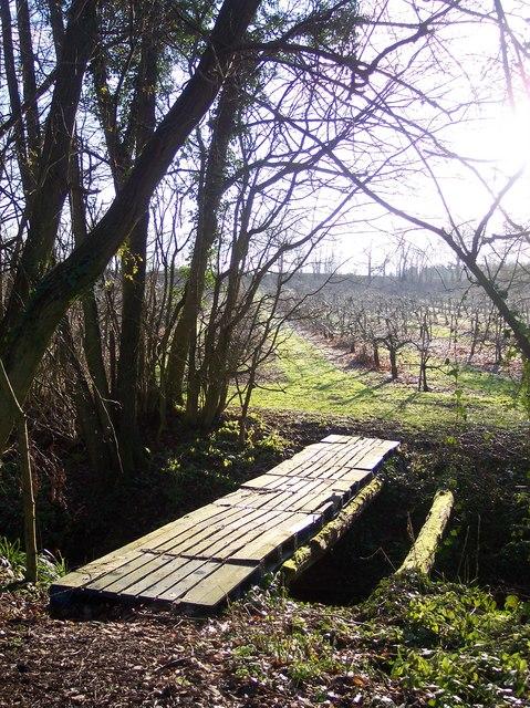 Orchard Footbridge