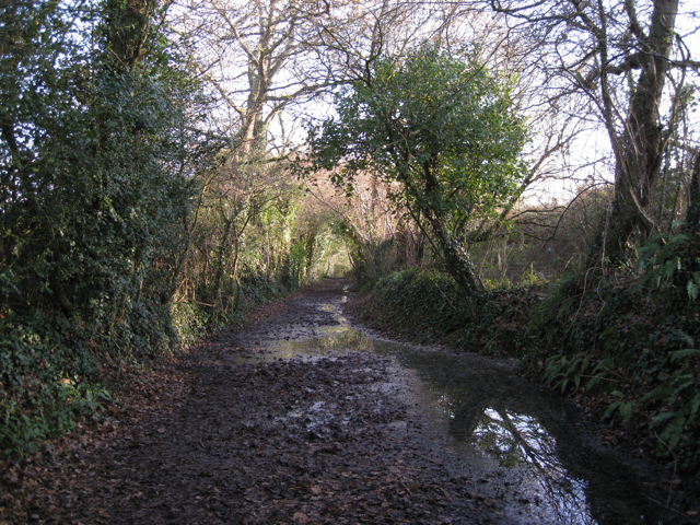 Bridleway heading southeast from Chudleigh Knighton