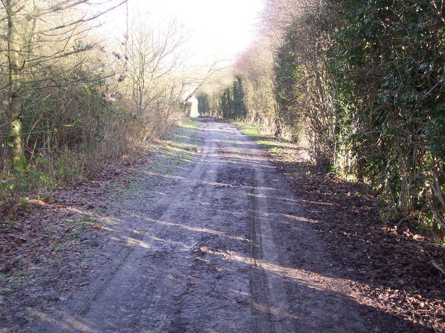 Track towards Marle Place Road