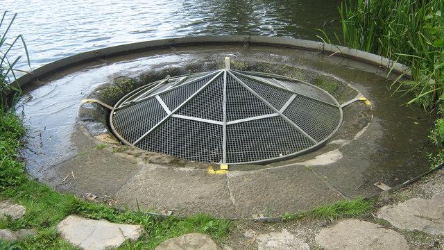 Allestree Lake in Derby