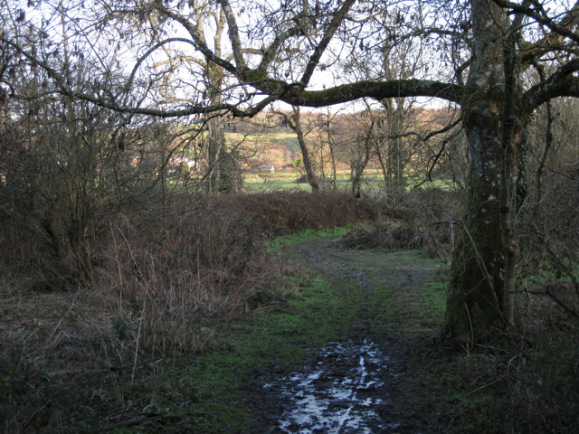 Hennock bridleway 22 approaches the River Teign