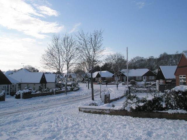 Junction of a snowy Littlepark Avenue and Oakwood Avenue