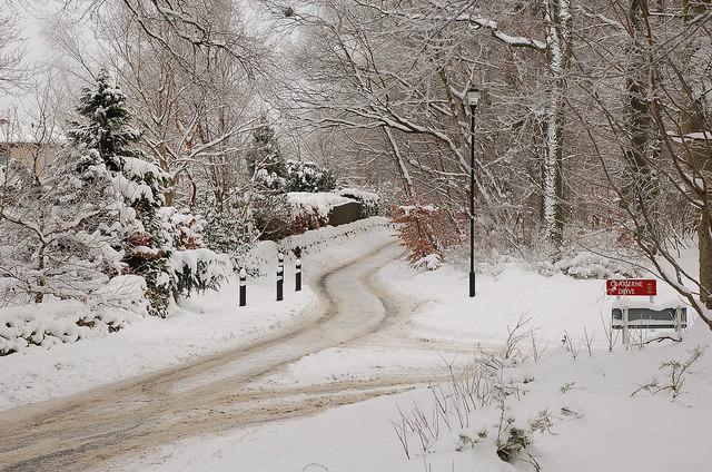 A winter scene at Craigerne Lane, Peebles