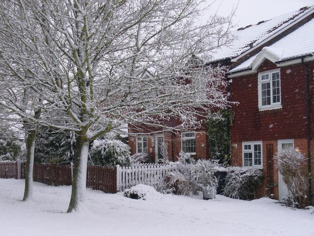 Snowy Greenhill Gardens