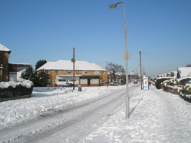 Lamppost in a snowy Littlepark Avenue