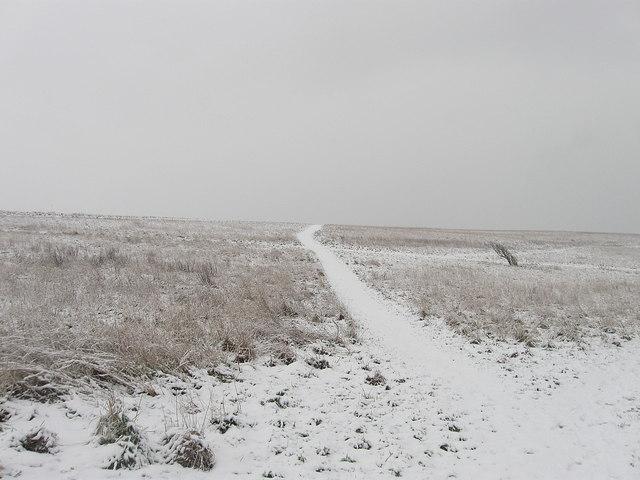 Path, Beacon Hill