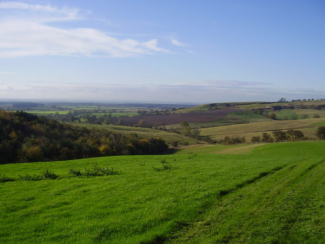 Looking down from the wolds