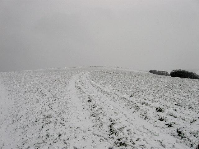 Permissive Bridleway, Cattle Hill