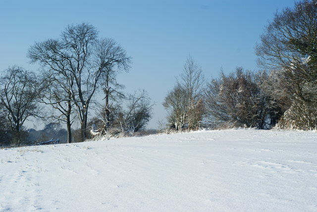 The top of Ashtead Hill, Merstham, Surrey