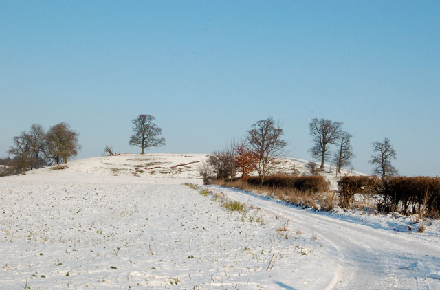 Snow-covered track to Windmill Hill, Marton