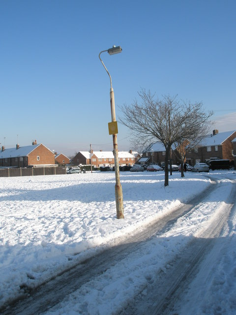 Lamppost in a snowy Plaitford Grove