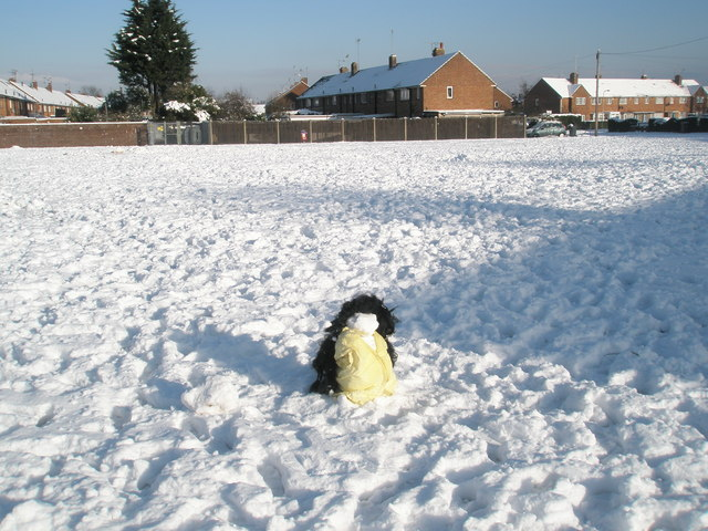 Snowman in  Plaitford Grove