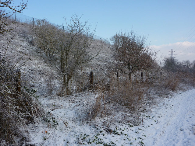 Snowy embankment by the Gipping