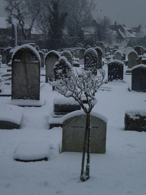 Jewish Cemetery in the snow, Hoop Lane NW11