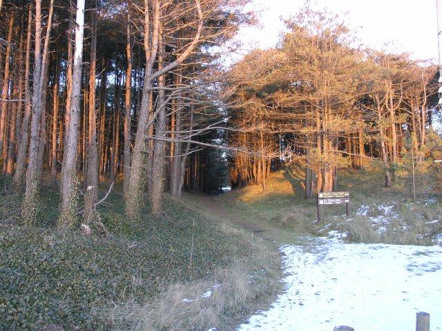 The start of St. Illtyd's Walk