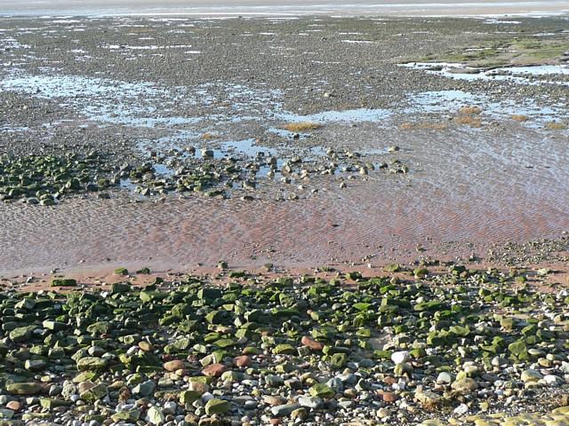 Beach near Bank Houses, Thurnham