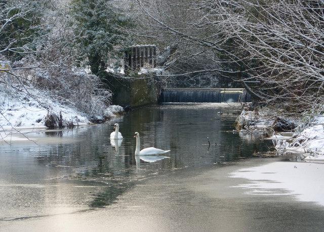 River scene in winter