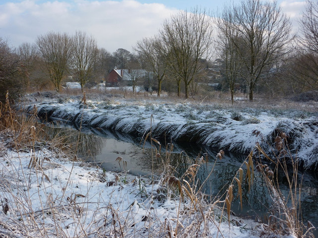 By the river Gipping in winter