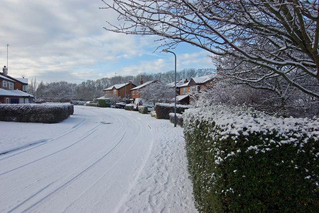 Mulberry Road, Bilton