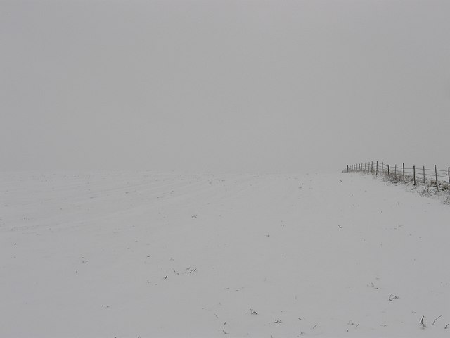 Whiteout, Cattle Hill