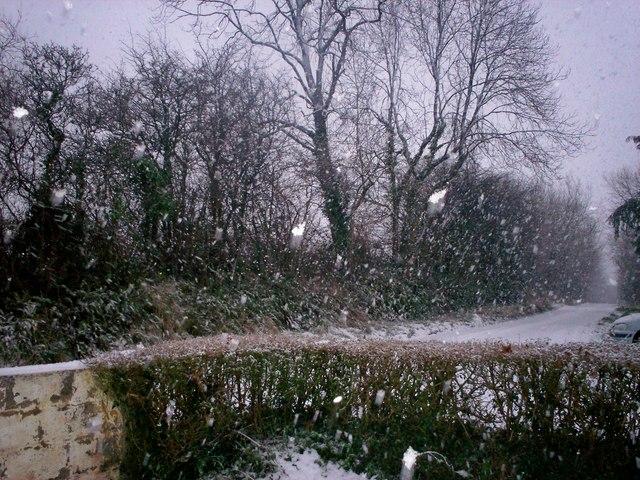 Another Snow Flurry - Sandy Grove - Llanteg