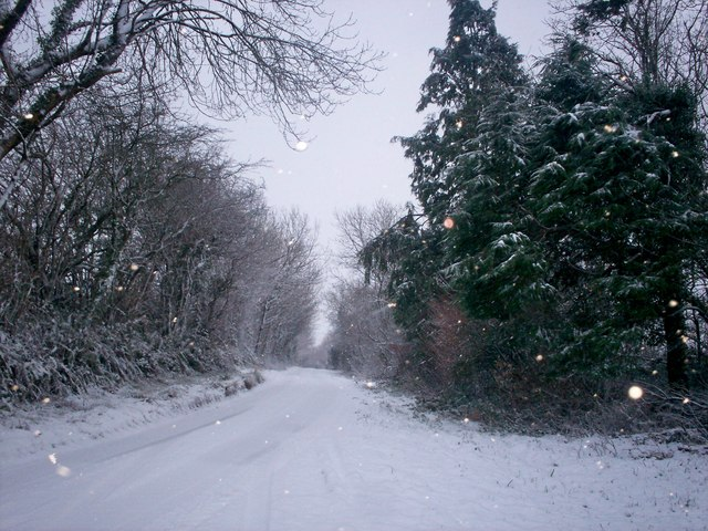 Snowy Trenewydd Lane out to Folly - Llanteg