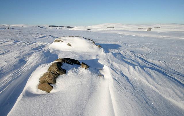 Buckholm Hill in winter