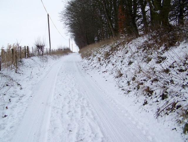 Track to Knighton Hill Farm