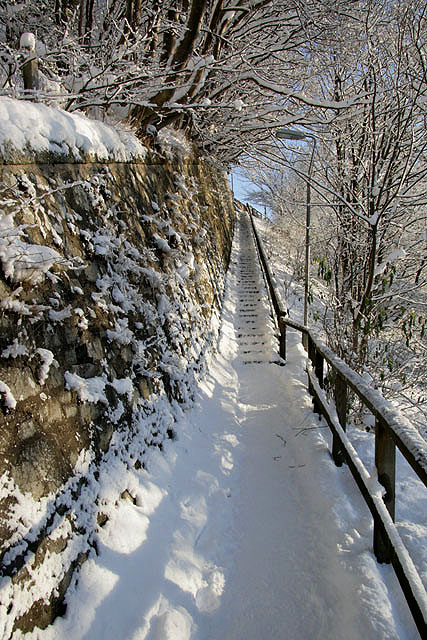 Steps at Langlee, Galashiels