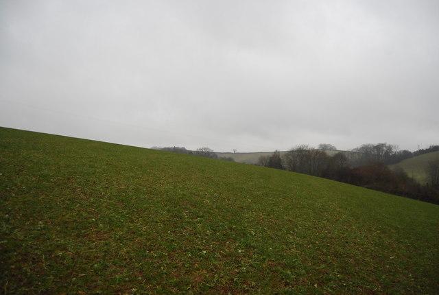 Field outside Stogumber