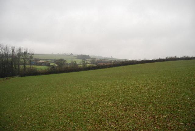 A field outside Stogumber