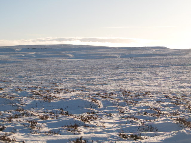 Snowy panorama from Stobb Cross (1: SSE - Sinderhope Carrs)