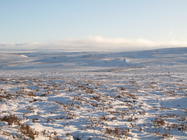 Snowy panorama from Stobb Cross (2: SE - Broad Mere and Rowantree Cleugh)