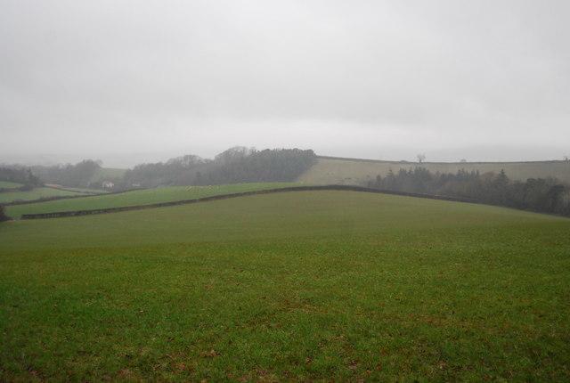 Rural scene outside Stogumber