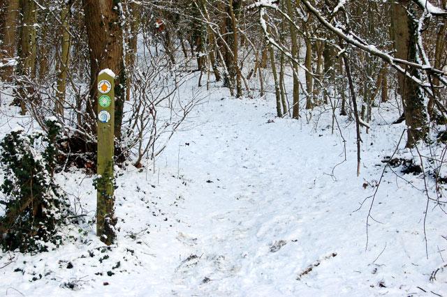Footpath marker beside Welsh Road west of Southam