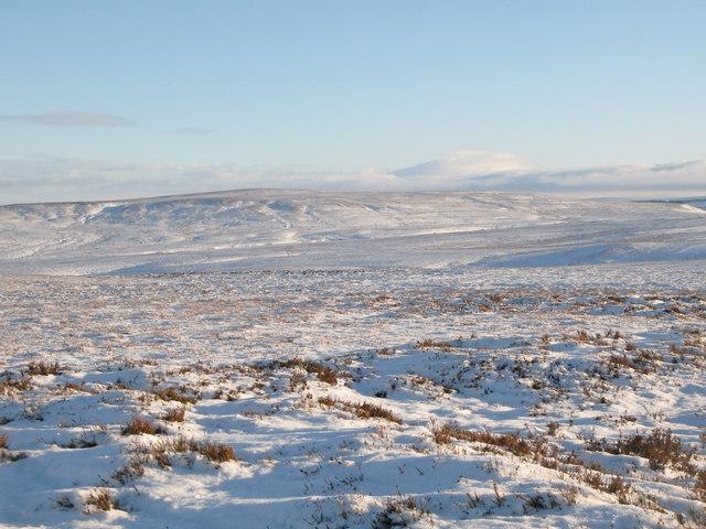 Snowy panorama from Stobb Cross (3: ESE - Watson's Pike)