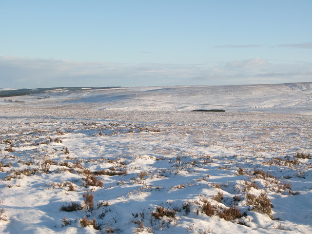 Snowy panorama from Stobb Cross (4: N of E - Westburnhope Moor and the Long Drag)