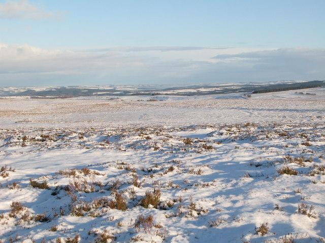Snowy panorama from Stobb Cross (5: ENE - Westburnhope valley)