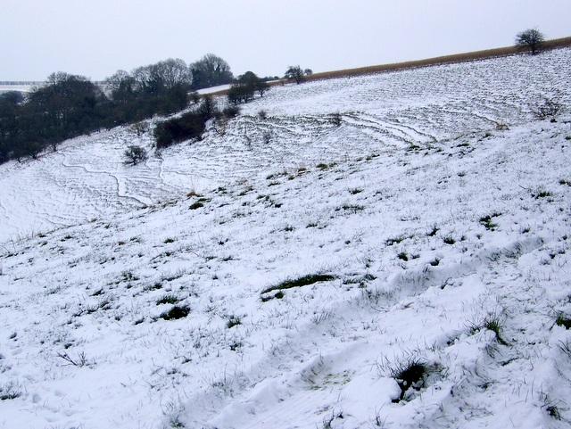 Downland, Knighton