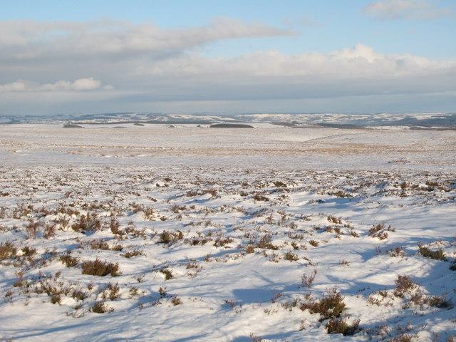Snowy panorama from Stobb Cross (6: NE - Moorland above Embley Edge)